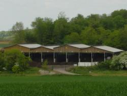 Agri Compost