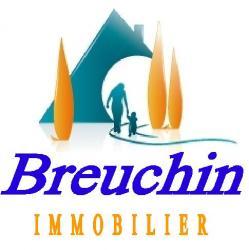 Breuchin immobilier