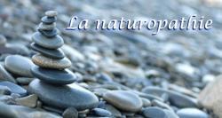 Naturopathie, Iridologie