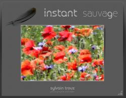 Instant sauvage : photographe  - Haute-Saone