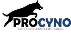 Education Canine Dressage Chie - Haute-Saone