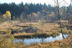 Découverte du plateau des mille étangs