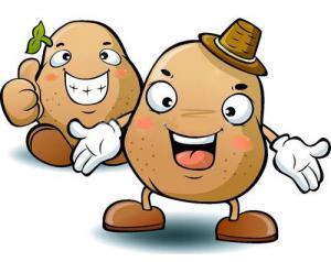 Foire à la patate