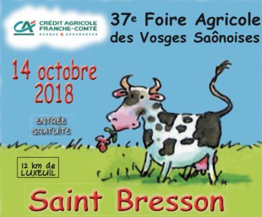 Foire de Saint-Bresson