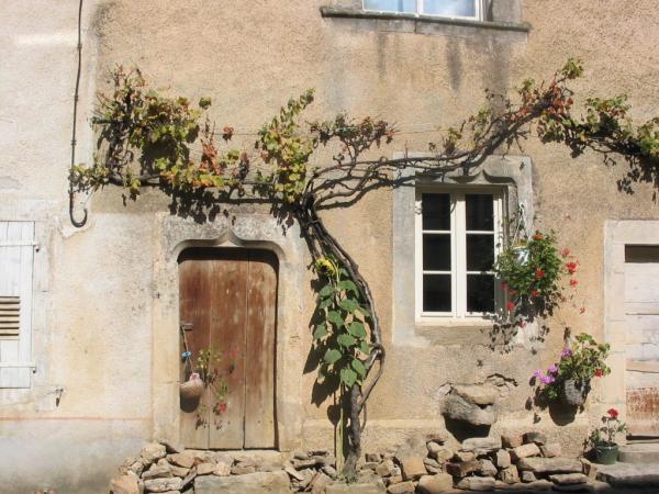 Maison vigneronne à Chariez