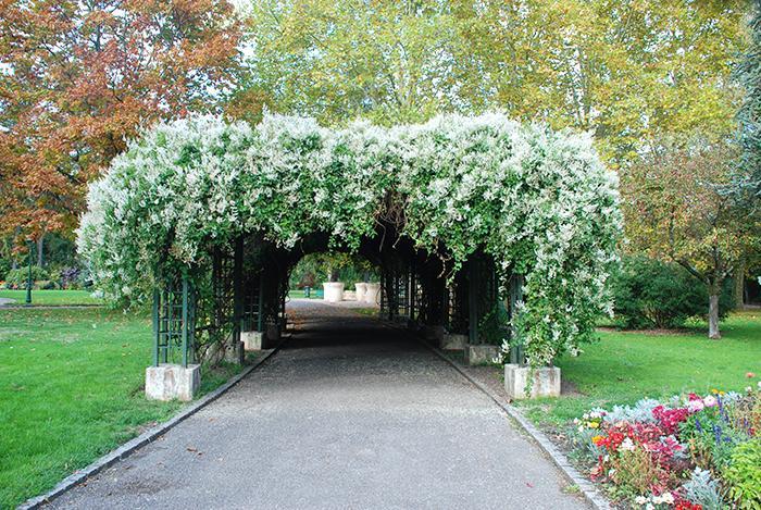 Le Jardin Anglais A Vesoul