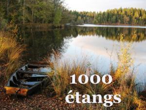 Tourisme aux 1000 étangs