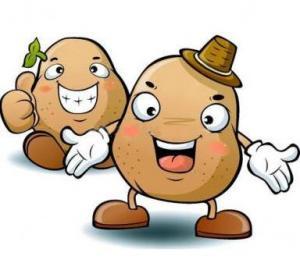 Bonjour à tous Patate-ronchamp-0fd1