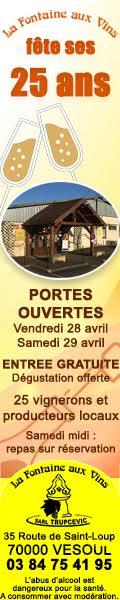 Anni La Fontaine aux Vins